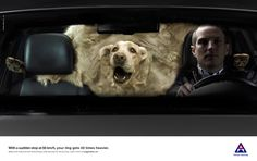 Norwegian Council for Road Safety: A Tonn of Dog Ad by TRY/APT, Oslo, Norway. With a sudden stop at 50 km/h, your dog gets 40 times heavier. Oslo, Ad Of The World, Serious Injury, Pet Safe, Creative Advertising, Print Ads, Print Poster, Norway, Your Pet