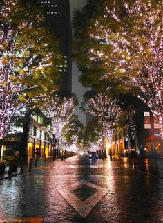 Illumination of Marunouchi Nakadori Street, Tokyo, Japan 東京 丸の内 Amazing Places, Beautiful Places, Beautiful Pictures, Travel Around The World, Around The Worlds, Political Pictures, Tokyo Style, Winter In Japan, Japanese Lifestyle