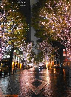 Illumination of Marunouchi Nakadori Street, Tokyo, Japan 東京 丸の内