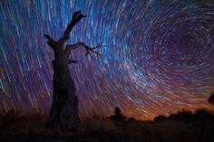 Amazing Long-Exposure Pics Of Star Trails #sunset #stars