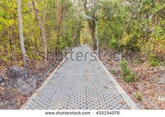 Concrete block footpath in forest - park, Thailand