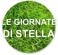 Il Blog di Stella Stella, Herbs, Blog, Herb, Spice