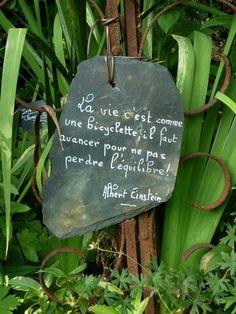 Un joli mot au jardin Jolie Phrase, Garden Deco, Father Quotes, French Quotes, Positive Attitude, Albert Einstein, Positive Affirmations, Cool Words, Life Is Good