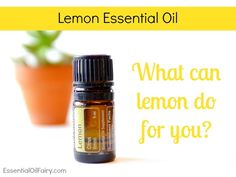 doterra - lemon essential oil - What can lemon do for you? - EssentialOilFairy.com #essentialoil