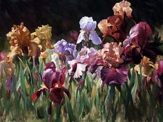 Flower Paintings by Leon Roulette-AmO Images-AmO Images