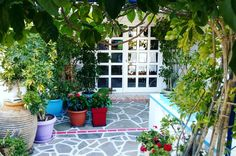 Entrance... www.angelosalonissos.com  #angelos_apartments #alonissos #alonisos #alonnisos #sporades #greece #island #summer #entrance #holidays #instagood #instamood #instalike #instadaily #picoftheday #f4f #l4l #plants #viaggio #ferie #estate #isola #Grecia #sommer