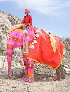 Back in photographer Charles Fréger travelled to India to snap photos of elephants. Instead of finding them in the army, Fréger found elephants – all dressed up to the nines – at an annual festival in Jaipur, Rajasthan. At this particular festival, Indian Elephant, Elephant Love, Elephant Art, Elephant Family, Matilda, Charles Freger, Cultures Du Monde, Elephants Photos, Elephant Pictures