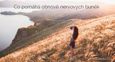 Co pomáhá obnově nervových buněk Nordic Interior, Mountains, Health, Fitness, Water, Travel, Outdoor, Gripe Water, Outdoors