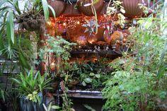 Jim's Garden - piano   Flickr - Photo Sharing!