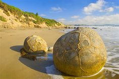 The Moerake Boulders of New Zealand form on the ocean floor and are now on the shoreline (© Alexandra Sailer/Ardea/Caters News)