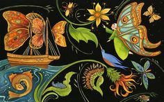 From the children's book 'Summer Birds: The Butterflies of Maria Merian' by Margarita Engle, illustrated by Julie Paschkis