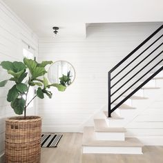 Nova with Opal Shade Foyer and Entryway Ideas Nova Opal shade Metal Railings, Staircase Railings, Stairways, Banisters, Iron Stair Railing, Spiral Staircases, Entryway Stairs, House Stairs, Entryway Decor