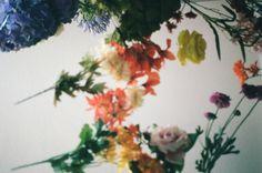 UO Print Shop: Elena Kulikova - Urban Outfitters - Blog