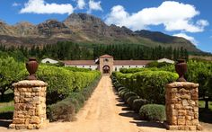 The Waterford Estate in Stellenbosch near Cape Town Visit South Africa, Cape Town South Africa, Santa Lucia, South African Wine, Wine Tourism, France, Africa Travel, Luxury Travel, Wonderful Places
