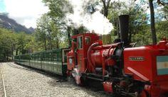 """El """"Tren del Fin del Mundo"""", en Ushuaia Argentina, hace un recorrido entre bosques muertos, con árboles que parecen fantasmas, ríos y la Cascada Macarena."""