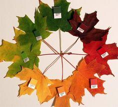 Fall wedding color inspiration wheel.