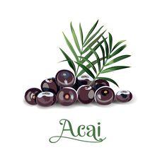 Restaurant Menu Template, Menu Restaurant, Logo Açaí, Best Acai Bowl Recipe, Acai Recipes, Ice Cream Clipart, Chopped Steak, Healthy And Unhealthy Food, Pizza Menu