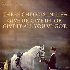 "the ""give it all you got' part explains so many things about showing your horse!"