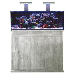 Aquarium keeping – Aquarium Keeping Tanked Aquariums, Folding Doors, Black Glass, Box Design, Livestock, Fish Tank, Tropical, Crystals, Accordion Doors