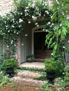Love the lushness of the climbing roses over the door, and the weight and heft of the antique wooden door.