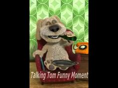 Talking Ben and Talking Tom Funny moment - http://dailyfunnypets.com/videos/cats/talking-ben-and-talking-tom-funny-moment/ - Talking Ben Funny and Talking Tom moment Extra Tags :- My Talking Tom hack, My Talking Tom cheat, My Talking Tom trainer tool, My Talking Tom hack download, My Talking Tom cheat download,... - &, animals, cat, cats, comedy, crossing, friends, funny, moment, parody, pet, pets, talking, talkingben, tom, video