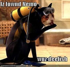 Iz fownd Nemo  wuz deelish
