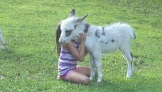 My granddaughter and our minature donkey Kloey