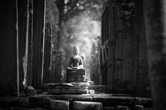 Photograph A moment of Zen by Khanh Nguyen on 500px