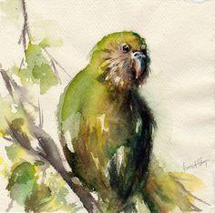 Watercolor Print of Kakapo Bird, Green Bird Painting, Watercolor Painting, Bird Wall Art Watercolor Bird, Watercolor Paintings, Original Paintings, Painting Art, Bird Wall Art, Bird Artwork, Fine Art Amerika, Folk Art, Art Prints