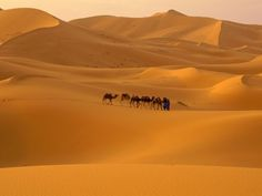 sahara Desert, Marocco