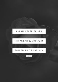 Only trust him that's it Allah Quotes, Muslim Quotes, Quran Quotes, Religious Quotes, Imam Ali Quotes, Beautiful Islamic Quotes, Islamic Inspirational Quotes, Islamic Qoutes, Allah Loves You