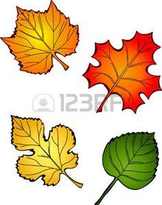 dibujos de hojas de otoño: Cuatro Hojas de otoño