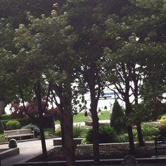 pretty park picture