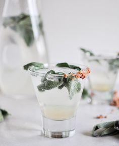 GIN FIZZ ■ Cocktail individuel à base de Gin ■ Frapper 6cl de gin, 4cl de jus de citron et 2cl de sirop de sucre de canne avec des glaçons, verser dans le verre tout le contenu du shaker et allonger avec 12cl d'eau gazeuse bien fraîche (Perrier ou Schweppes)