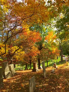 Beautiful fall colors at Alton City Cemetery. Check it out during annual Vintage Voices event.