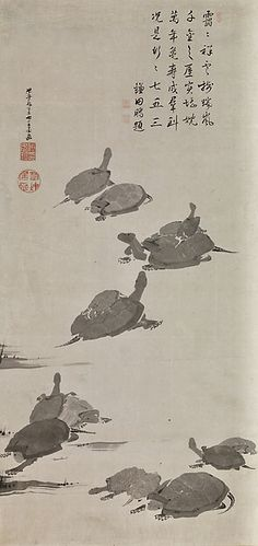 伊藤若冲筆 鎌田鵬 (柳泓) 賛 亀図 Turtles. Itō Jakuchū (Japanese, 1716–1800) Inscribed by Kamata Hō (Japanese, 1754–1821). late 18th century Japanese hanging scroll; ink on paper. Promised gift to The Met.