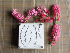 Learn how to make your own flower press so you can preserve these Summer blooms
