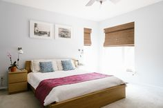 """The bedroom. """"All furniture is from IKEA, including the fabric for the dog bed. The pillows are from the Metrolina Tradeshow Expo (RIP). The orchid is from Campbell's Nursery in Charlotte, which is a great place to buy plants here."""""""