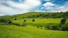 Download Green Hills Desktop HD Wallpaper