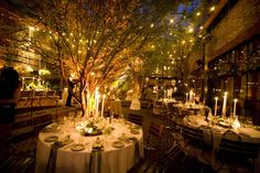 I love the tree inside, the fairy lights and the golden lighting...Outdoors indoors.