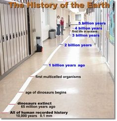 Great Lessons:  The History of the Earth in a Toilet Paper Roll ...................