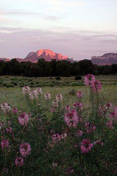 Sawtooth Mountains...Idaho