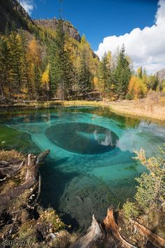 Голубое озеро, Горный Алтай. Фотограф: Вета Казина