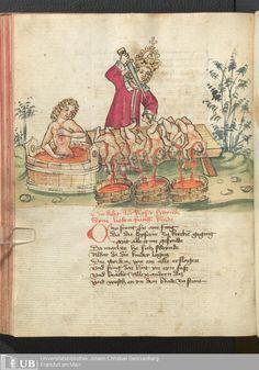 238 [117v] - Ms. germ. qu. 12 - Die sieben weisen Meister - Page - Mittelalterliche Handschriften - Digitale Sammlungen Frankfurt, 1471
