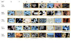 Chronograph Miami Beach boards