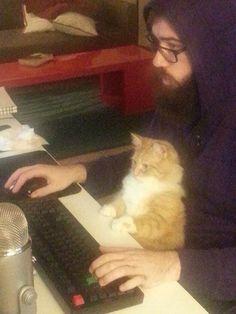Kitty supervisor.