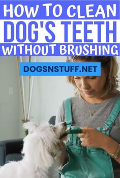 Cleaning your dogs teeth is one of the greatest challenges of being a dog mom. Read this article to learn useful techniques in cleaning dog's teeth! mom How to Clean Dog's Teeth At Home – Dogs N' Stuff Dog Health Tips, Pet Health, Puppy Socialization, Big Dog Little Dog, Dog Mom Gifts, Dental Problems, Dog Teeth, Dog Rules, Dog Hacks