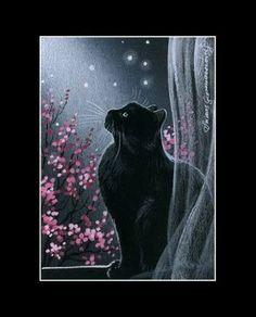 Black cat aceo nuit de printemps imprimer par I garmashova Pretty Pictures, Art Pictures, Pretty Pics, Black Cat Art, Black Cats, Good Night Cat, What's New Pussycat, Spring Art, Cat Sitting