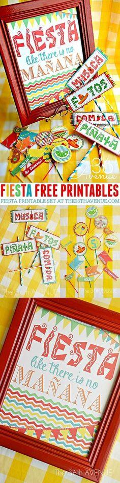 Cinco de Mayo Fiesta Printables. Fun way to decorate my house for a cinco de mayo party!