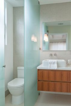 Home design ideas transitional elements and room dividers - Bathroom glass partition designs ...